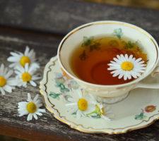 Приглашение на Чайную церемонию